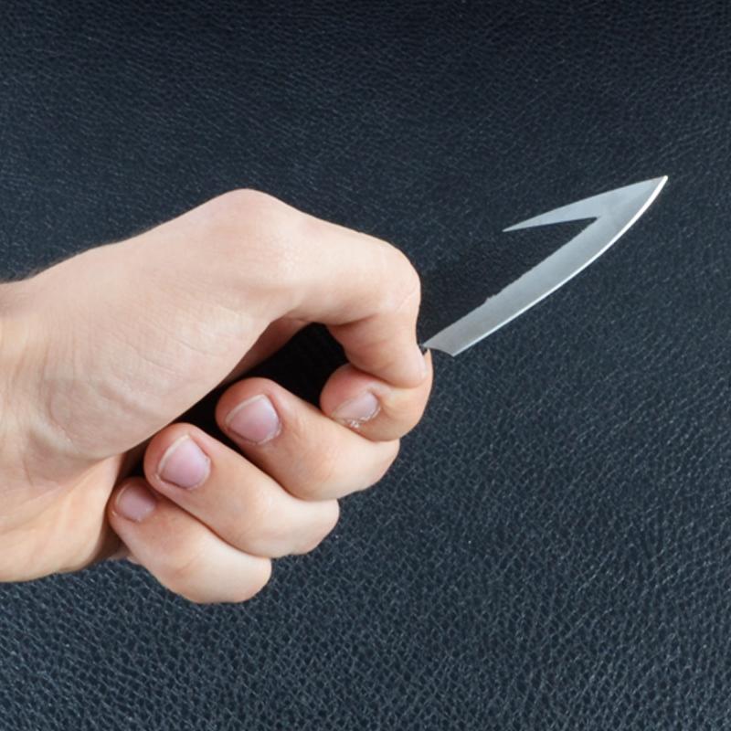 Набор ножей метательных Скорпион 3шт. (170, 210, 250мм)